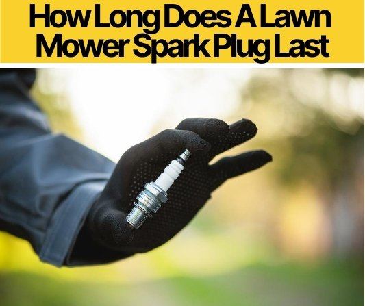 How Long Does A Lawn Mower Spark Plug Last (When to Replace)
