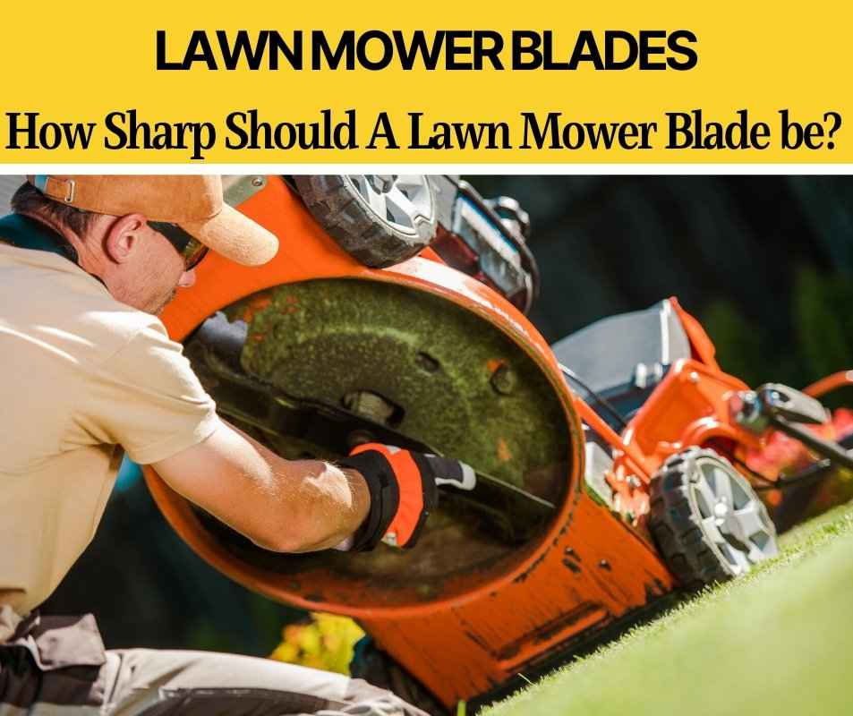 How Sharp Should a Lawn Mower Blade Be (For a Great Cut!)