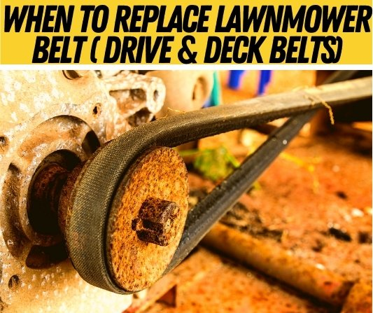 when to replace lawnmower belt